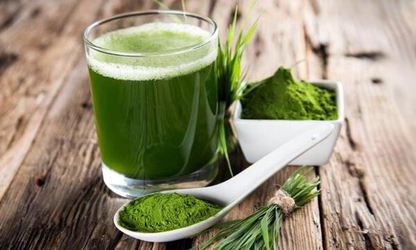 Las Maravillosas Propiedades Nutricionales Del Alga Espirulina